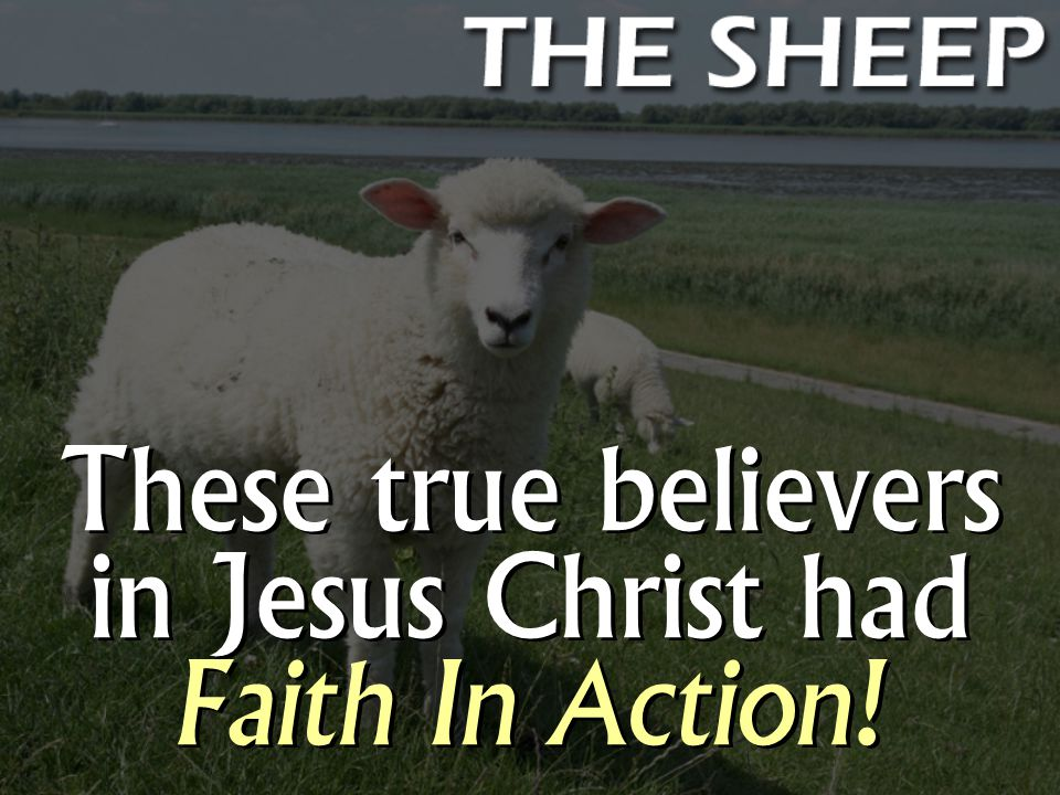 These true believers in Jesus Christ had Faith In Action!
