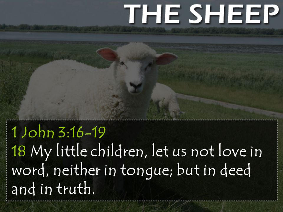 1 John 3:16-19 18 My little children, let us not love in word, neither in tongue; but in deed and in truth.