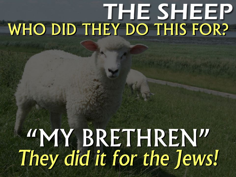 WHO DID THEY DO THIS FOR MY BRETHREN They did it for the Jews!