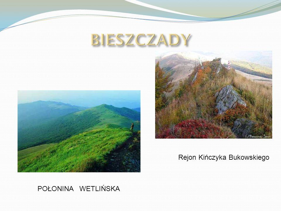 POŁONINA WETLIŃSKA Rejon Kińczyka Bukowskiego