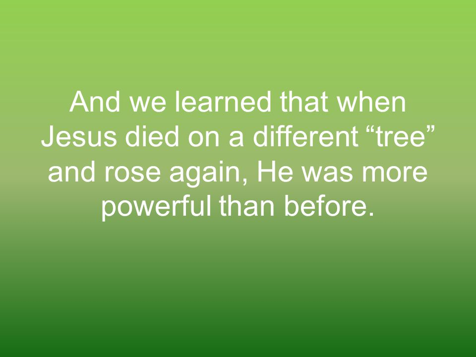 """And we learned that when Jesus died on a different """"tree"""" and rose again, He was more powerful than before."""