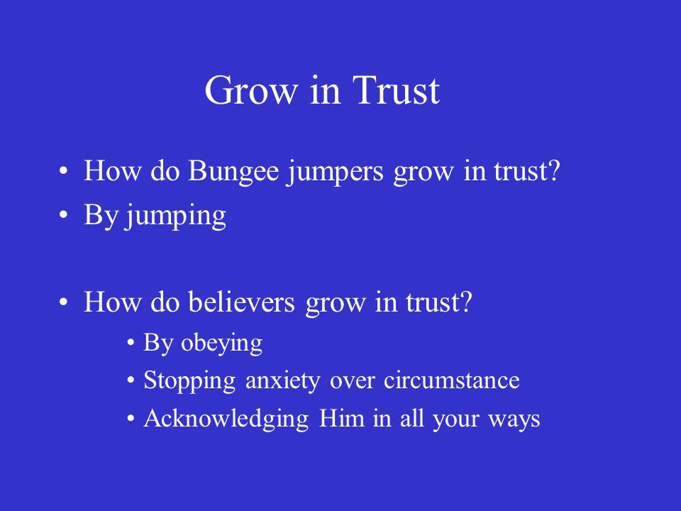 Grow in Trust How do Bungee jumpers grow in trust.
