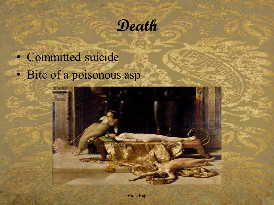 Death Committed suicide Bite of a poisonous asp Huda Haji7