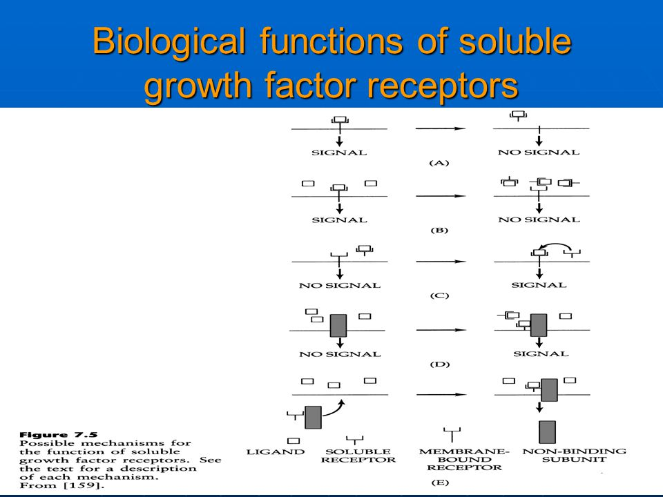 Biological functions of soluble growth factor receptors