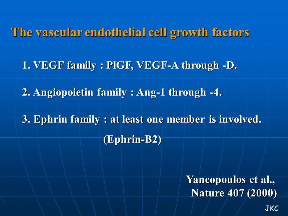 The vascular endothelial cell growth factors 1. VEGF family : PlGF, VEGF-A through -D. 1. VEGF family : PlGF, VEGF-A through -D. 2. Angiopoietin famil