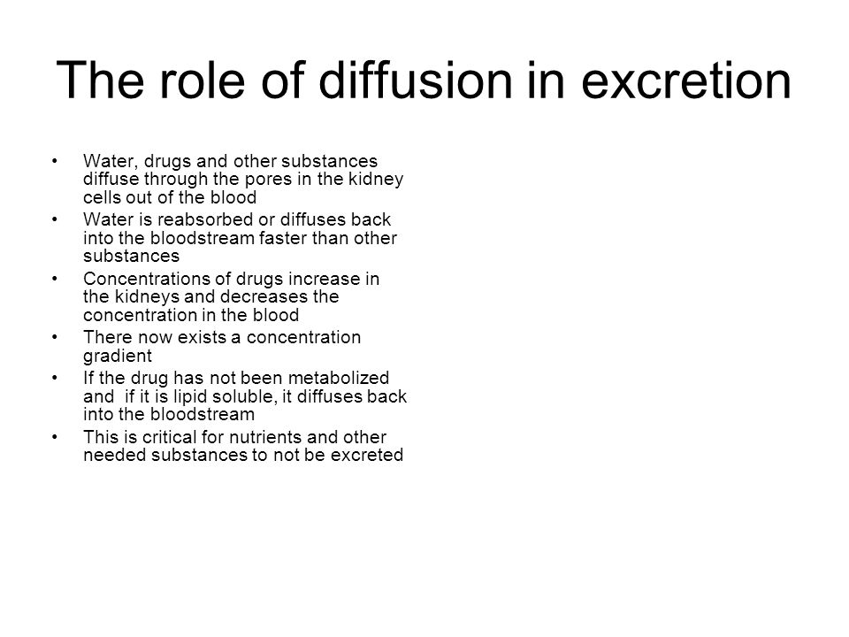 The role of diffusion in excretion Water, drugs and other substances diffuse through the pores in the kidney cells out of the blood Water is reabsorbe