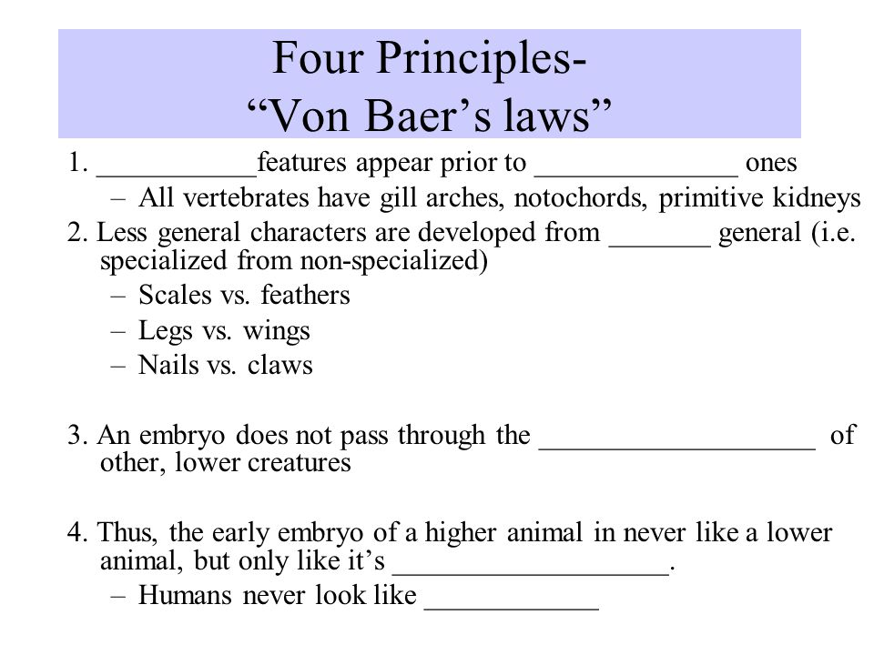 Four Principles- Von Baer's laws 1.