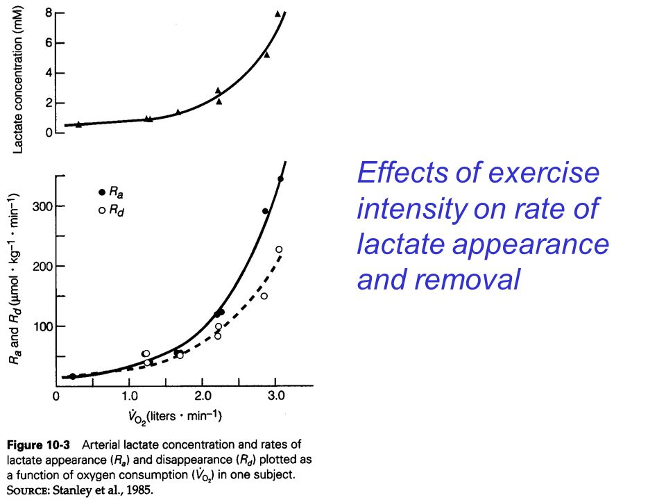 Effects of exercise intensity on rate of lactate appearance and removal