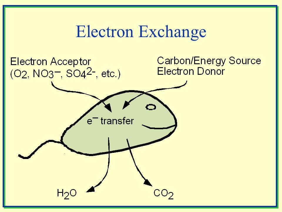 Electron Exchange