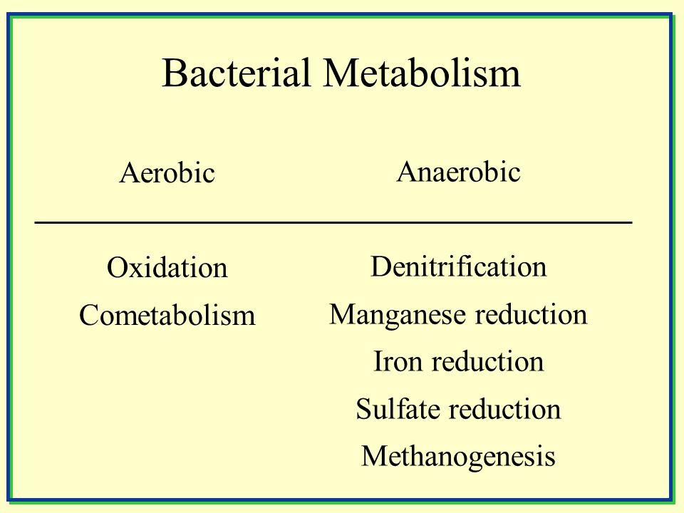 Aerobic Oxidation Cometabolism Anaerobic Denitrification Manganese reduction Iron reduction Sulfate reduction Methanogenesis Bacterial Metabolism