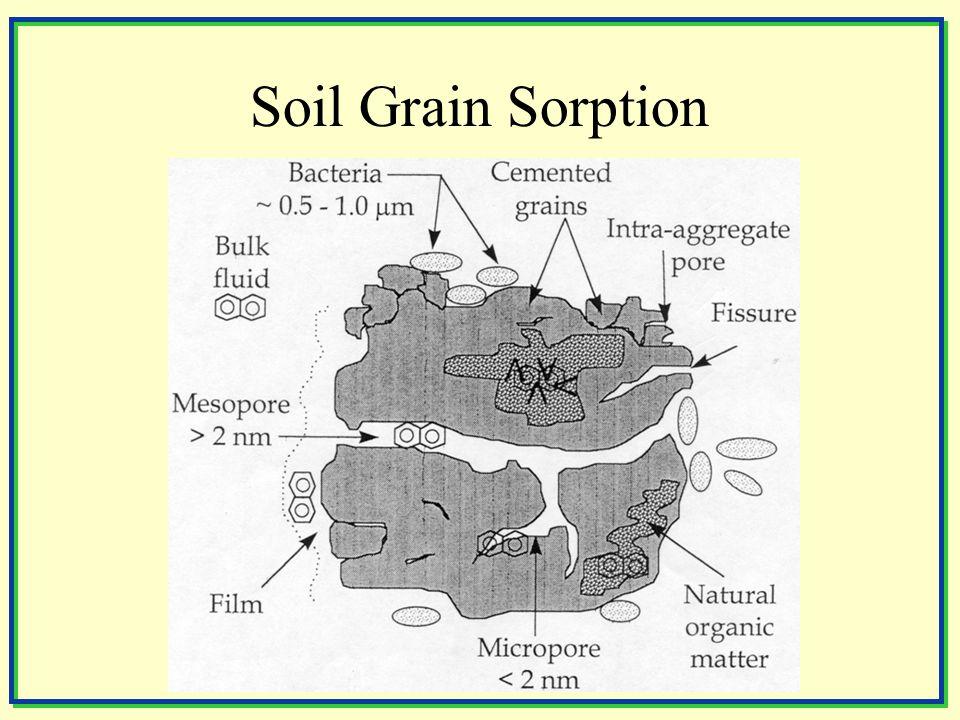 Soil Grain Sorption