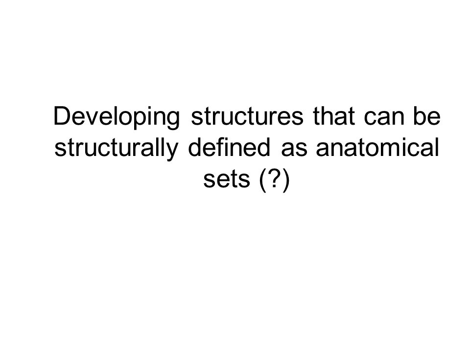 Developing structures that can be structurally defined as anatomical sets ( )