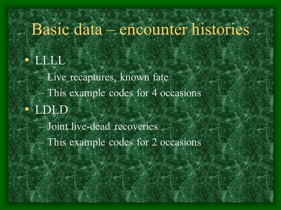 Basic data – encounter histories LLLL –Live recaptures, known fate –This example codes for 4 occasions LDLD –Joint live-dead recoveries –This example codes for 2 occasions