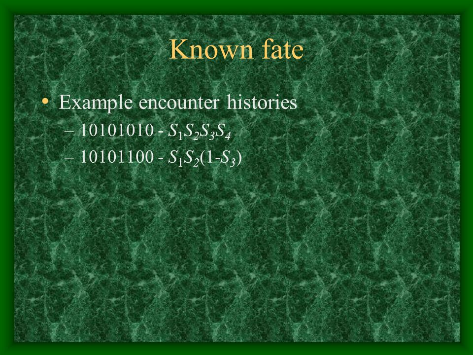 Known fate Example encounter histories –10101010 - S 1 S 2 S 3 S 4 –10101100 - S 1 S 2 (1-S 3 )