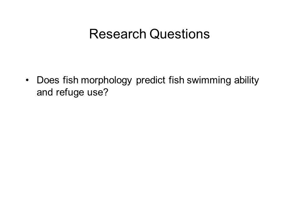 Research Questions Does fish morphology predict fish swimming ability and refuge use