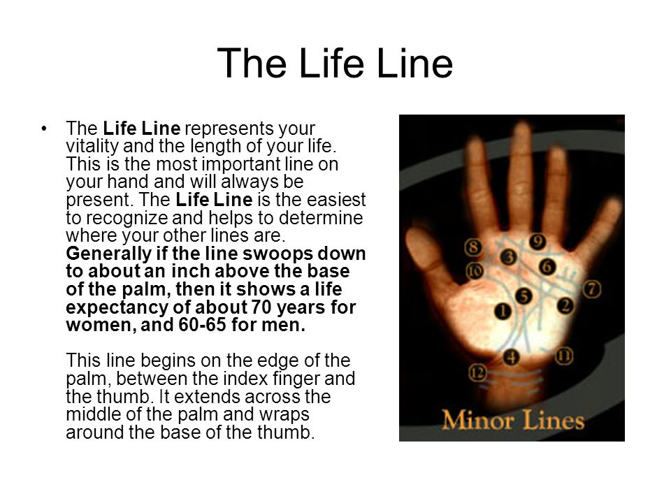 The Life Line The Life Line represents your vitality and the length of your life.
