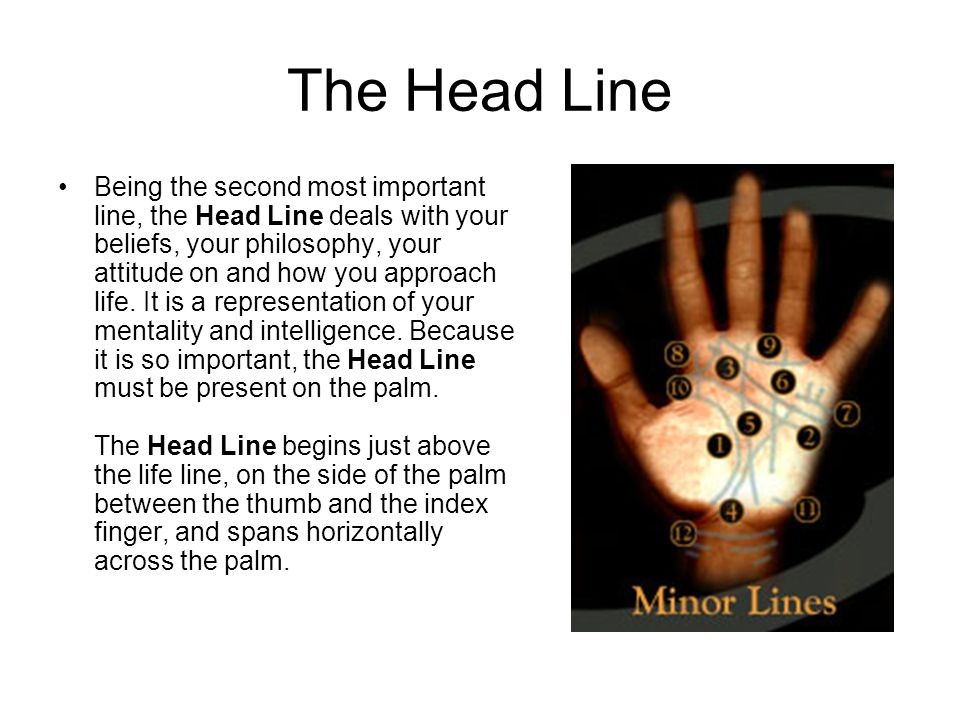 The Head Line Being the second most important line, the Head Line deals with your beliefs, your philosophy, your attitude on and how you approach life.