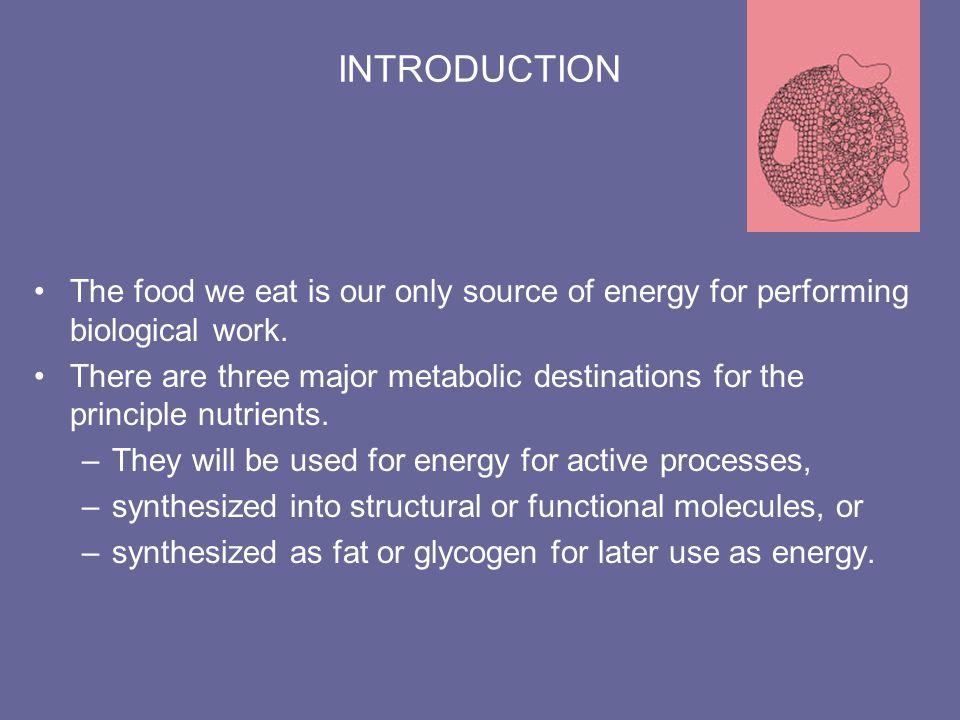 Glycogenesis & Glycogenolysis Glycogenesis –glucose storage as glycogen –4 steps to glycogen formation in liver or skeletal muscle –stimulated by insulin Glycogenolysis –glucose release