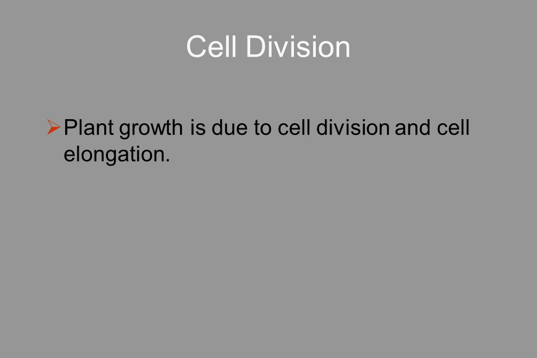 Cell Division  Plant growth is due to cell division and cell elongation.