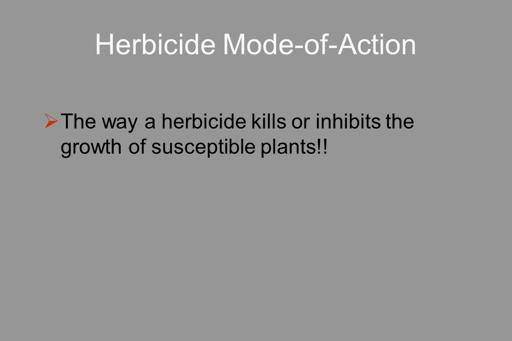 Herbicide Mode-of-Action  The way a herbicide kills or inhibits the growth of susceptible plants!!