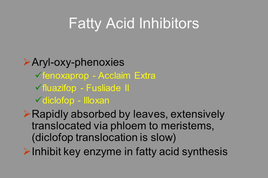 Fatty Acid Inhibitors  Aryl-oxy-phenoxies fenoxaprop - Acclaim Extra fluazifop - Fusliade II diclofop - Illoxan  Rapidly absorbed by leaves, extensively translocated via phloem to meristems, (diclofop translocation is slow)  Inhibit key enzyme in fatty acid synthesis