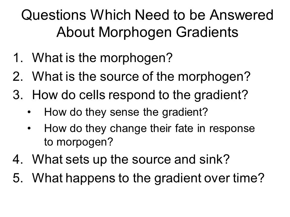 Questions Which Need to be Answered About Morphogen Gradients 1.What is the morphogen.