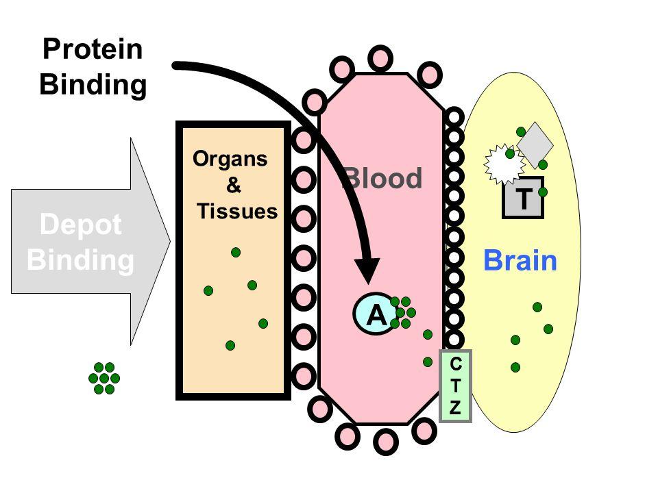 TA Blood Brain CTZCTZ Organs & Tissues Protein Binding Depot Binding