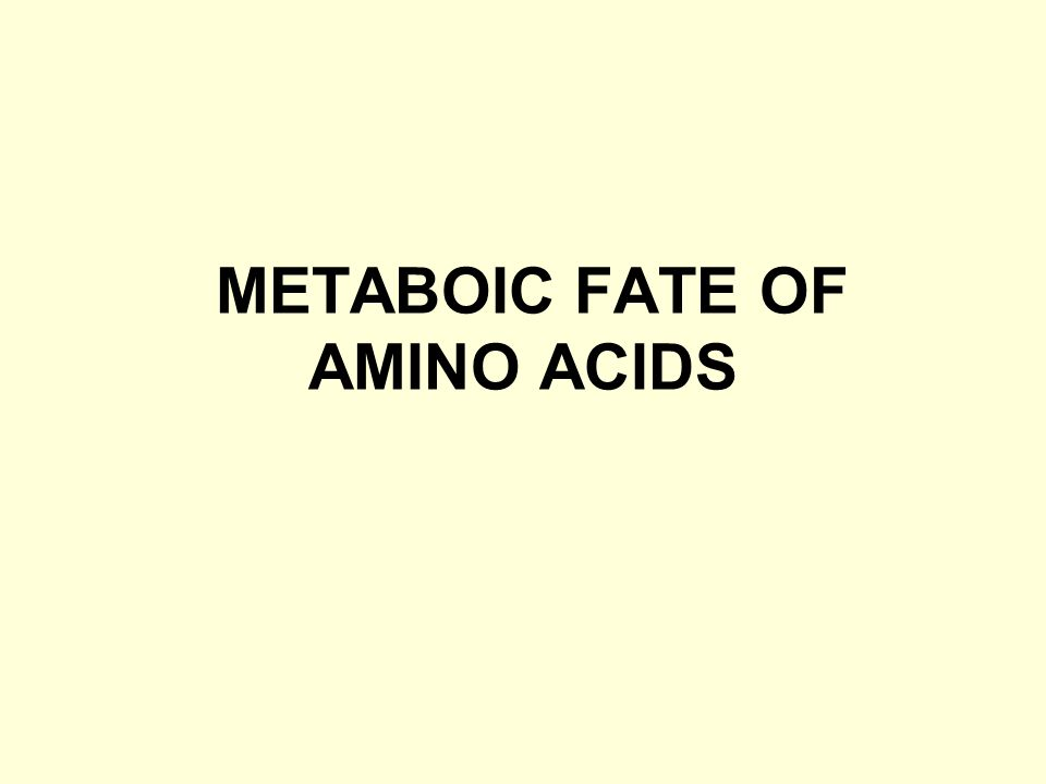 METABOIC FATE OF AMINO ACIDS