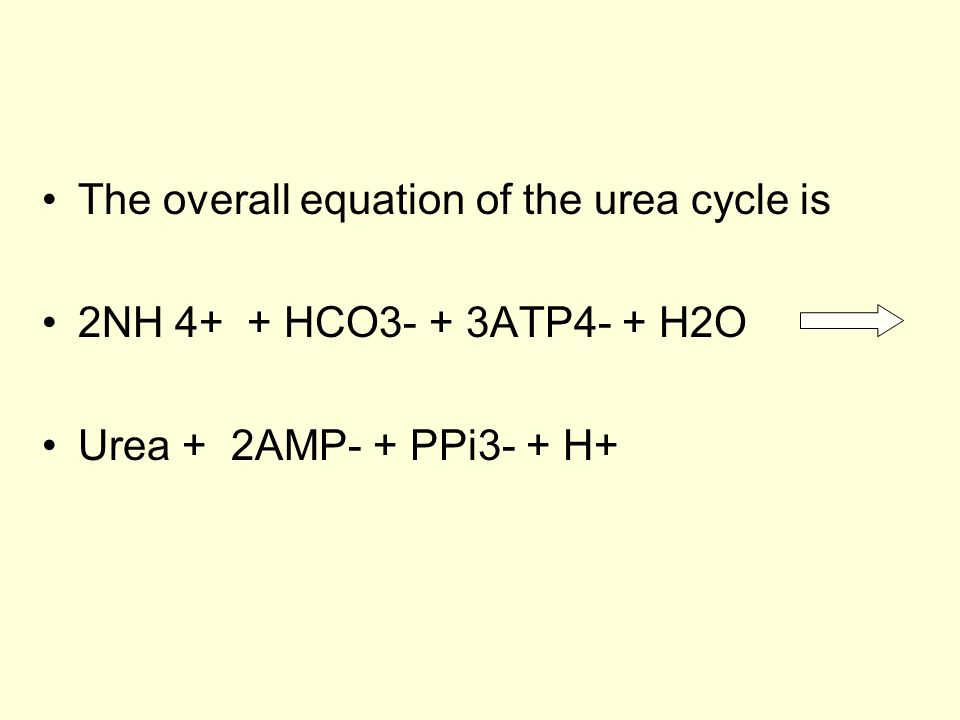 The overall equation of the urea cycle is 2NH 4+ + HCO3- + 3ATP4- + H2O Urea + 2AMP- + PPi3- + H+