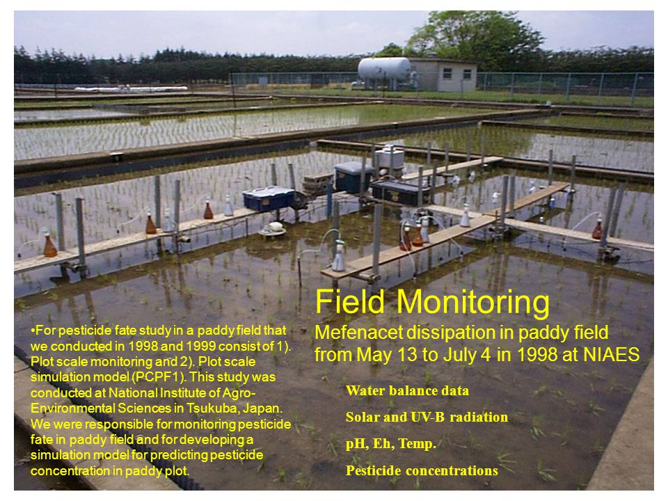 11 Field Monitoring Mefenacet dissipation in paddy field from May 13 to July 4 in 1998 at NIAES Water balance data Solar and UV-B radiation pH, Eh, Temp.