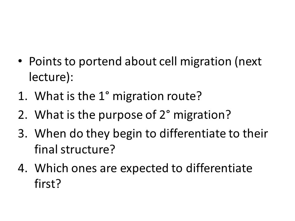 Points to portend about cell migration (next lecture): 1.What is the 1° migration route.
