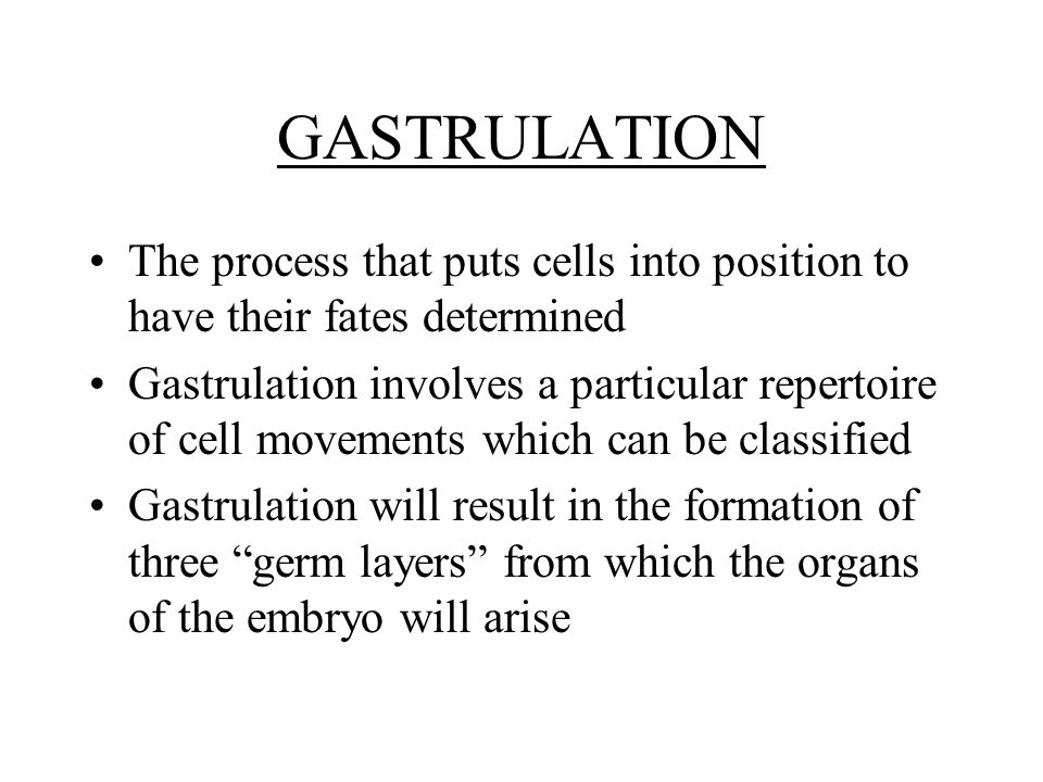 GASTRULATION The process that puts cells into position to have their fates determined Gastrulation involves a particular repertoire of cell movements which can be classified Gastrulation will result in the formation of three germ layers from which the organs of the embryo will arise
