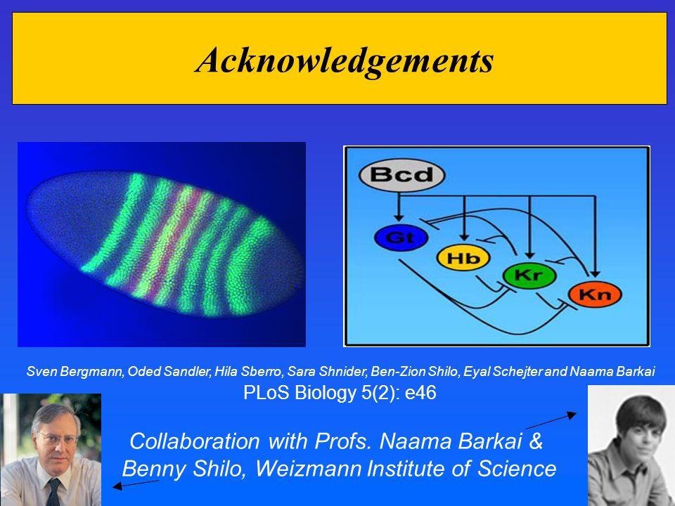Acknowledgements Collaboration with Profs. Naama Barkai & Benny Shilo, Weizmann Institute of Science Sven Bergmann, Oded Sandler, Hila Sberro, Sara Sh
