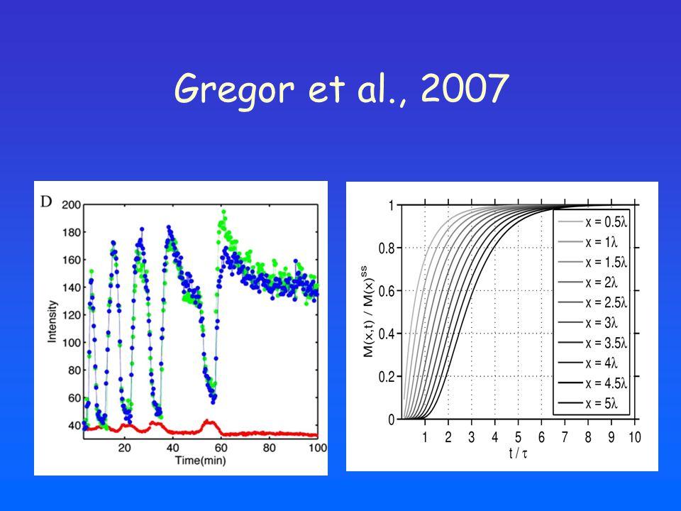 Gregor et al., 2007