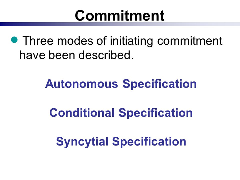 Commitment  Three modes of initiating commitment have been described. Autonomous Specification Conditional Specification Syncytial Specification