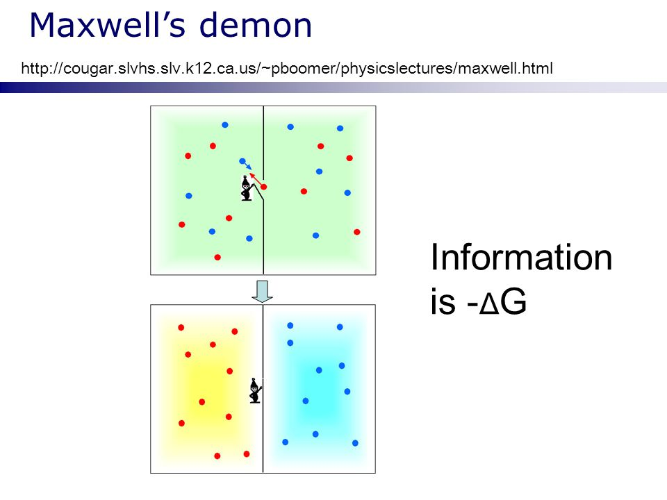 Maxwell's demon http://cougar.slvhs.slv.k12.ca.us/~pboomer/physicslectures/maxwell.html Information is - Δ G