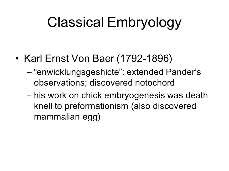 """Classical Embryology Karl Ernst Von Baer (1792-1896) –""""enwicklungsgeshicte"""": extended Pander's observations; discovered notochord –his work on chick e"""