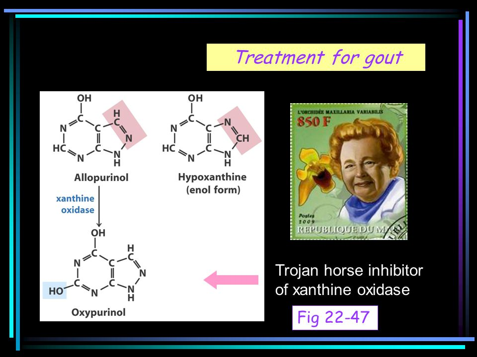 Treatment for gout Trojan horse inhibitor of xanthine oxidase Fig 22-47