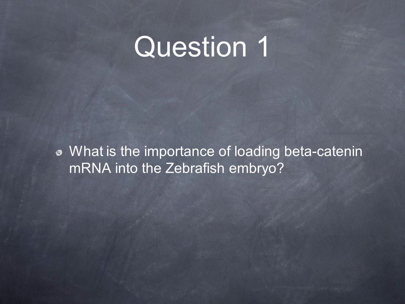 Question 1 What is the importance of loading beta-catenin mRNA into the Zebrafish embryo?