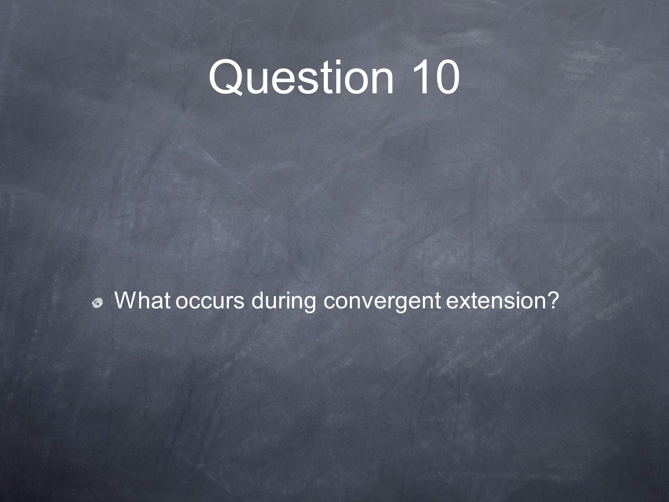 Question 10 What occurs during convergent extension?