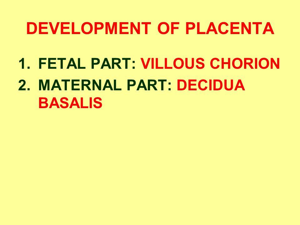 DEVELOPMENT OF PLACENTA 1.FETAL PART: VILLOUS CHORION 2.MATERNAL PART: DECIDUA BASALIS
