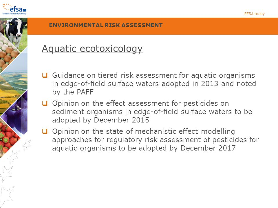 Aquatic ecotoxicology  Guidance on tiered risk assessment for aquatic organisms in edge-of-field surface waters adopted in 2013 and noted by the PAFF  Opinion on the effect assessment for pesticides on sediment organisms in edge-of-field surface waters to be adopted by December 2015  Opinion on the state of mechanistic effect modelling approaches for regulatory risk assessment of pesticides for aquatic organisms to be adopted by December 2017 EFSA today ENVIRONMENTAL RISK ASSESSMENT