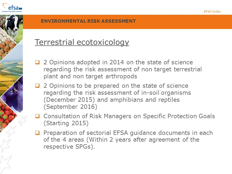 Terrestrial ecotoxicology  2 Opinions adopted in 2014 on the state of science regarding the risk assessment of non target terrestrial plant and non target arthropods  2 Opinions to be prepared on the state of science regarding the risk assessment of in-soil organisms (December 2015) and amphibians and reptiles (September 2016)  Consultation of Risk Managers on Specific Protection Goals (Starting 2015)  Preparation of sectorial EFSA guidance documents in each of the 4 areas (Within 2 years after agreement of the respective SPGs).