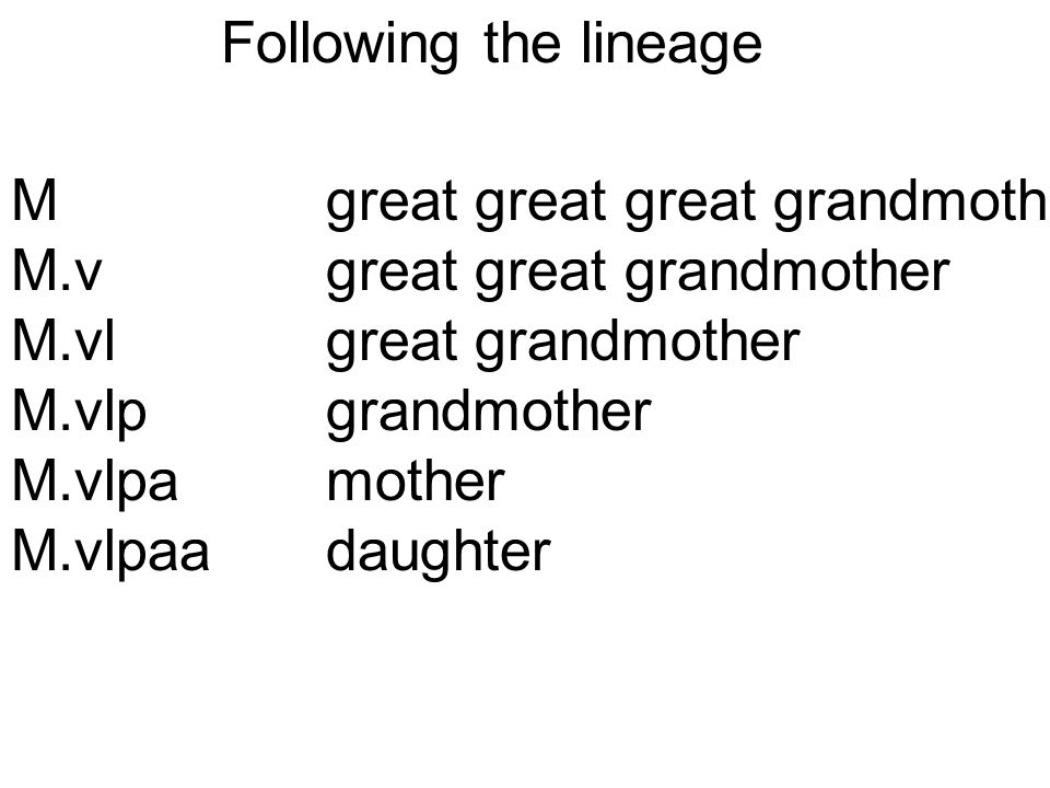Mgreat great great grandmoth M.vgreat great grandmother M.vlgreat grandmother M.vlpgrandmother M.vlpamother M.vlpaadaughter Following the lineage