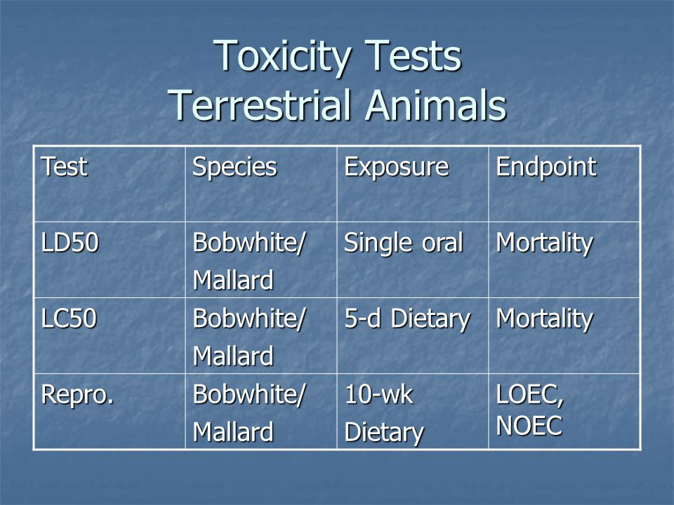 Toxicity Tests Terrestrial Animals TestSpeciesExposureEndpoint LD50Bobwhite/Mallard Single oral Mortality LC50Bobwhite/Mallard 5-d Dietary Mortality Repro.Bobwhite/Mallard10-wkDietary LOEC, NOEC