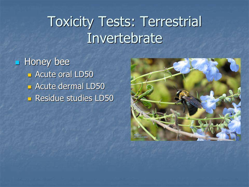 Toxicity Tests: Terrestrial Invertebrate Honey bee Honey bee Acute oral LD50 Acute oral LD50 Acute dermal LD50 Acute dermal LD50 Residue studies LD50 Residue studies LD50
