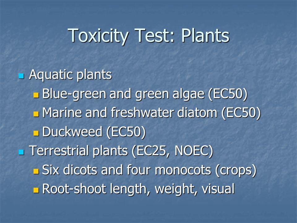 Toxicity Test: Plants Aquatic plants Aquatic plants Blue-green and green algae (EC50) Blue-green and green algae (EC50) Marine and freshwater diatom (EC50) Marine and freshwater diatom (EC50) Duckweed (EC50) Duckweed (EC50) Terrestrial plants (EC25, NOEC) Terrestrial plants (EC25, NOEC) Six dicots and four monocots (crops) Six dicots and four monocots (crops) Root-shoot length, weight, visual Root-shoot length, weight, visual