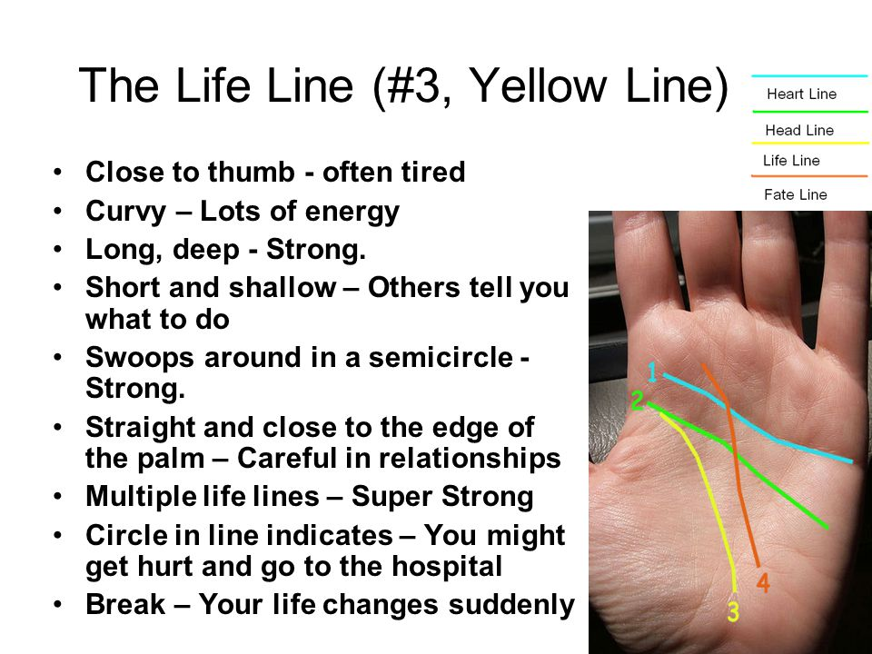 Close to thumb - often tired Curvy – Lots of energy Long, deep - Strong. Short and shallow – Others tell you what to do Swoops around in a semicircle