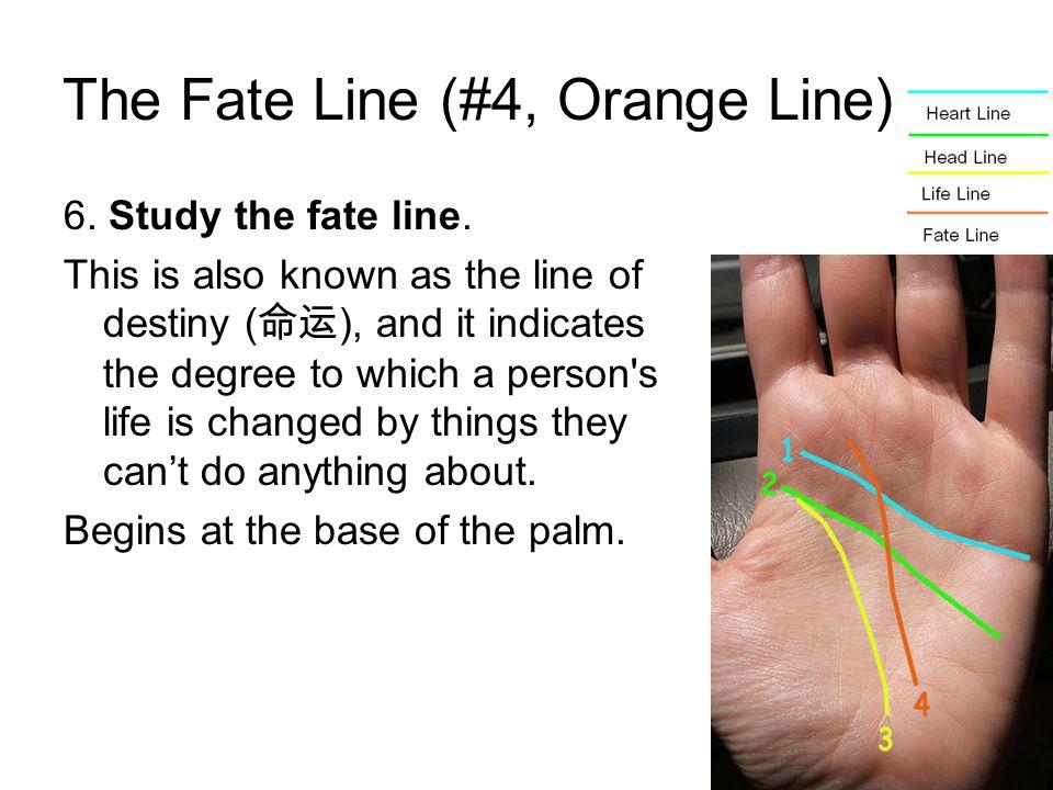 The Fate Line (#4, Orange Line) 6.Study the fate line.