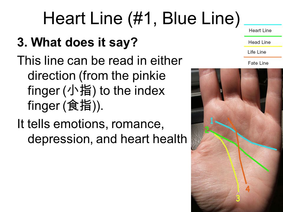 Heart Line (#1, Blue Line) 3. What does it say? This line can be read in either direction (from the pinkie finger ( 小指 ) to the index finger ( 食指 )).